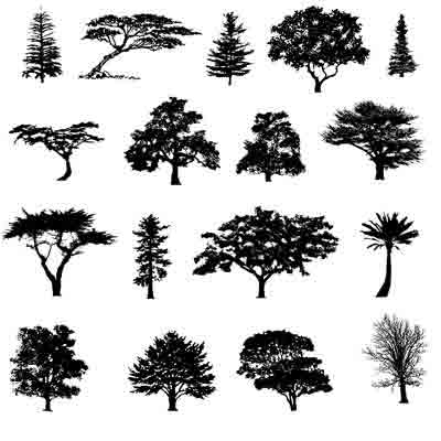 Decal Profusion Trees / Gold