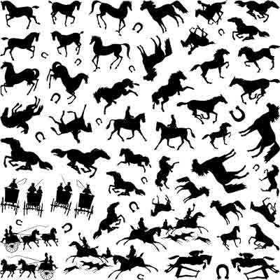 Decal Profusion Horses / Black
