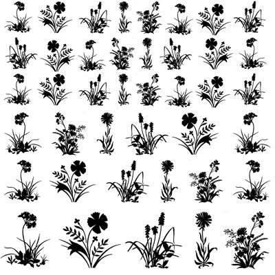Decal Profusion Stemmed Flowers 2 / Black